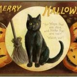 Vintage macskás Halloween